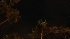TIMELAPSE Night Under Pines In France Stock Footage