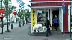 Iceland city of Reykjavik 022 polar bears at a souvenir shop in downtown Stock Footage