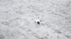 Girl controls Dji Phantom with gopro in flight taking photos Stock Footage