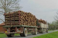 timber truck carrying - stock photo