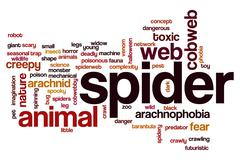 Spider word cloud - stock illustration