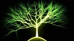Tree of Light Particles - Green Stock Footage