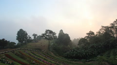 Huai Nam Dang National Park Chiang Mai, Thailand Stock Footage