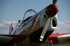 Proud smalle plane - stock photo