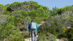A Man with Backpack Walking on Forest Trail Stock Footage