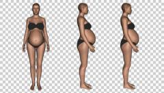 Female body changes in pregnancy, time lapse with ALPHA Stock Footage