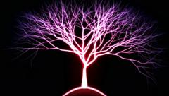 Tree of Light Particles - Pink Stock Footage