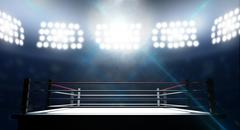 Boxing Ring In Arena Stock Illustration