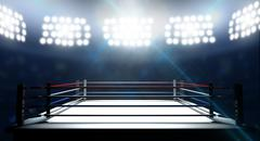 Boxing Ring In Arena - stock illustration