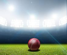 Cricket Stadium And Ball Stock Illustration