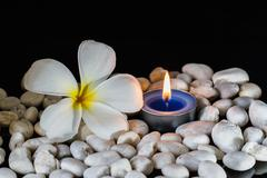Plumeria flowers scented candles Stock Photos