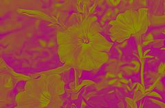 Decorative flowers in the style of airbrushing - - stock photo