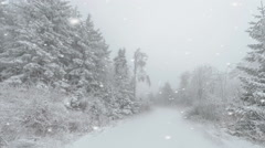 Winding country road in snow clad forests Stock Footage