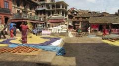 Nepali woman threshing grain in traditional way Stock Footage