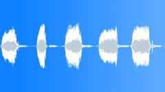 Duck Quacking Sound Effect