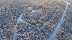 Aerial winter forest with roads Stock Footage