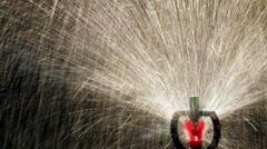 Close up water sprinkler, Dark background. Stock Footage