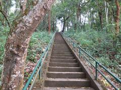 Stair to tropical mountain - stock photo