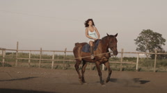 Young woman riding a horse on a lunging rein Stock Footage