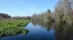 FloridaCentral_BlueSpringPark_StJohnsRiver_17svv Stock Footage