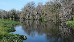 FloridaCentral_BlueSpringPark_StJohnsRiver_18svv Stock Footage