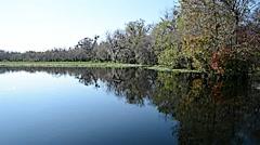 FloridaCentral_BlueSpringPark_StJohnsRiver_21svv Stock Footage