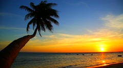 Tropical beach at sunset Stock Footage