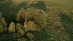 Top view of green fields and trees cast shadows Stock Footage