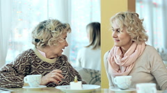 Joyous Discussion Stock Footage