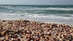 Sea waves over Seashell Stack Looped Stock Footage