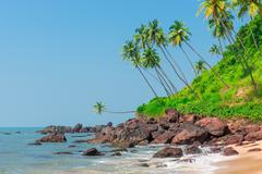 Stock Photo of stones in the sea and palm trees on the hill