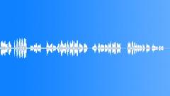Trumpeter warms up (Trumpet, Improvisation, Musical Instrument, Play) - sound effect