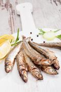 Grilled sardines. - stock photo