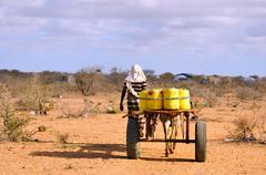 african male with horse-drawn carriage carrying water to the pri - stock photo