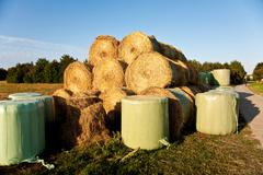 Bale of straw infold in plastic film to keep dry in automn in intensive color Stock Photos