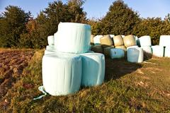 Bale of straw in automn in intensive colors Stock Photos