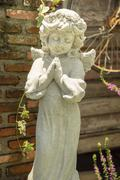 happy little angel - stock photo