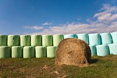 Bale of straw infold in plastic film (foil) to keep dry in automn in intensiv Stock Photos