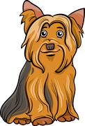Yorkshire terrier dog cartoon illustration Stock Illustration