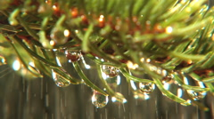 Rain drops falling on pine needles, clean fresh water, droplets Stock Footage