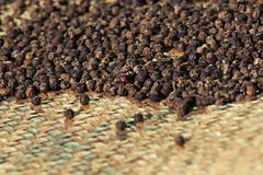 Stock Photo of Drying Pepper
