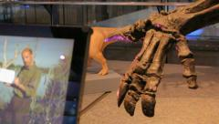 Dinosaur Museum - Brussels 023 Stock Footage