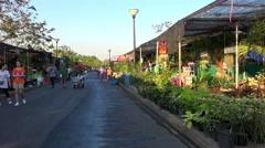 Flower Display Bangkok, 2014 - 6 Stock Footage