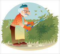 Stock Illustration of The old gardener working in the garden cutting the bushes