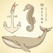 Sketch seahorse, whale and anchor in vintage style - stock illustration