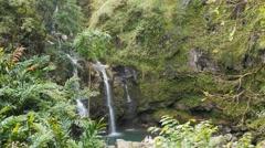 Waterfall on road to hana maui Stock Footage