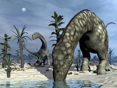 Argentinosaurus dinosaur drinking - 3D render - stock illustration