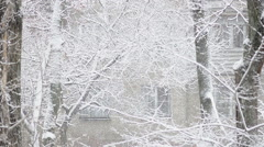 Snowfall motion of winter cold weather with haze effect Stock Footage