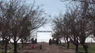 Stock Video Footage of People walk around a cemetery and cars drive by.