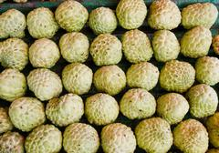 Stock Photo of The Custard apple .
